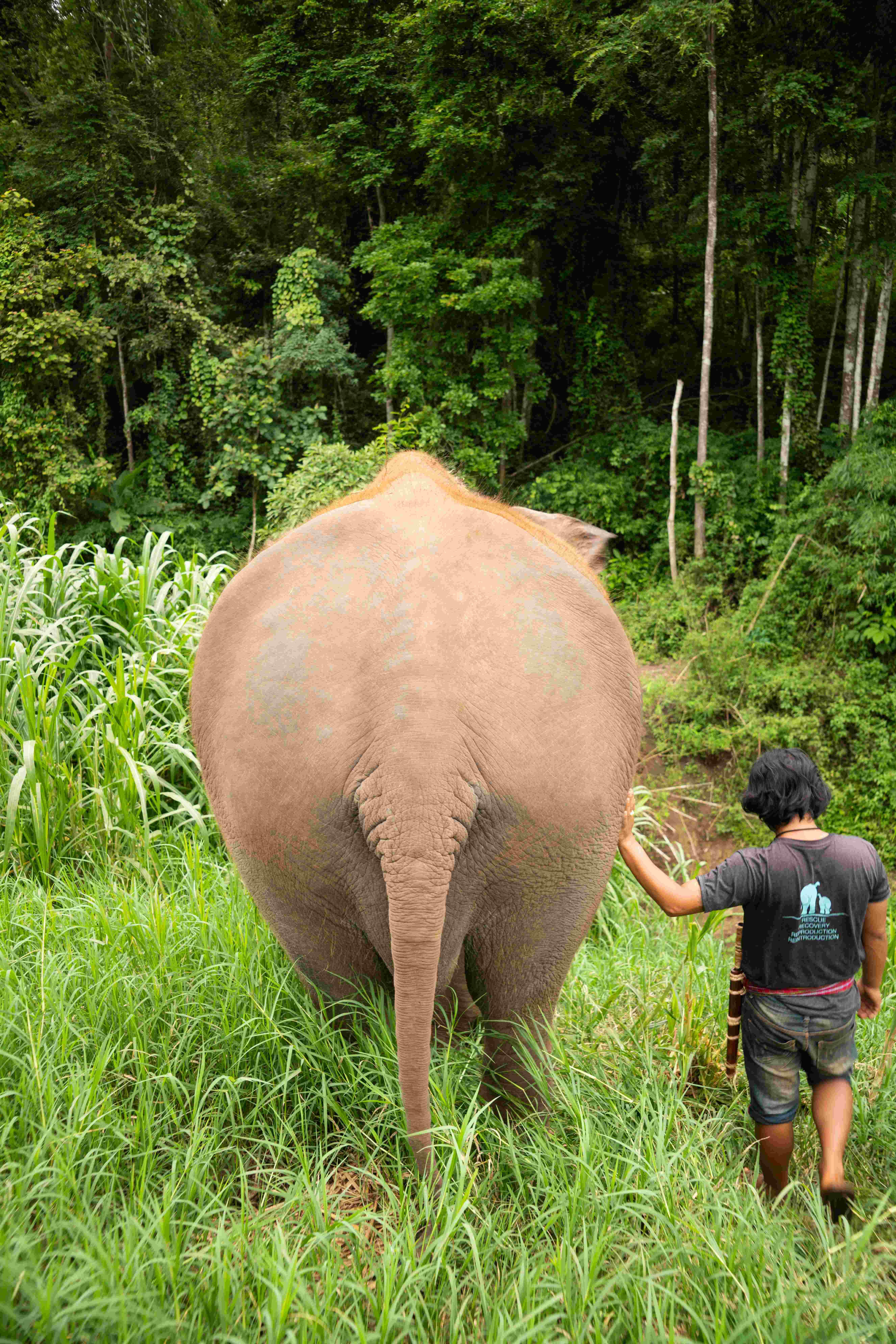 Thailand-621.jpg